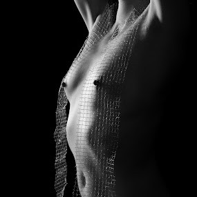 50 shades of nede body by Martin Zenisek - Nudes & Boudoir Artistic Nude ( breast, nude, black and white, woman, net,  )