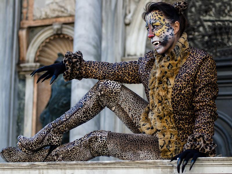Una tigre al carnevale di Fiore Doncovio