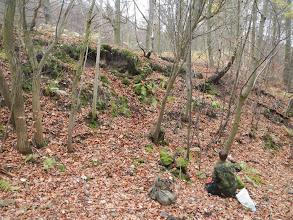 Photo: Výchoz dutinkatého čediče na levé straně údolí (10.11. 2013).