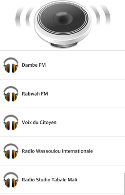 Radio Mali - screenshot