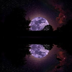 Nightlights & A Supernova by Joey - Landscapes Starscapes ( pwcreflections supernova stars waterscape )