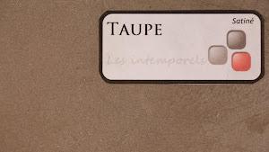 nuancier-les-betons-de-clara-taupe-collection-les-intempprels-decoration-interieure-enduit-decoratif.jpg