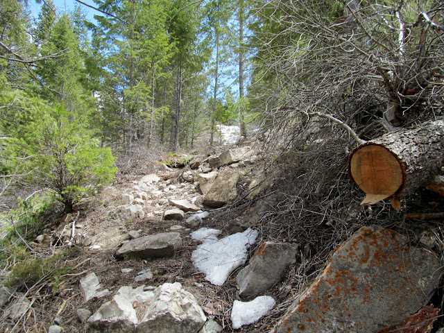Steep trail into Diamanti Canyon