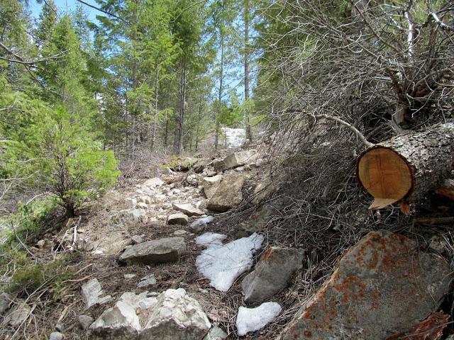 Steep trail into Diamanti Canyon