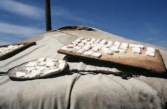 Photo: 03135 ウランバートル/牧民の家/ゲルの屋根に乳製品を干す