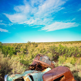 Abandoned Automobilia by Mathan Tenney - Transportation Automobiles ( car, automobiles, old, truck, vintage, automobile, rusty, trucks, northern arizona, cars, rusted, high desert, abandoned,  )