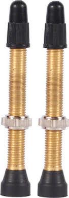 WTB Brass TCS Valve Pair alternate image 0
