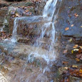 Водопад by Georgi Kolev - Nature Up Close Water ( есен., слънце., сенки., вода., скали., листа. )