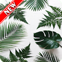 Tropical Leaves Wallpaper icon