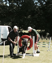 Photo: Dog Agility Try Out