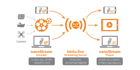 live streaming Schema.png