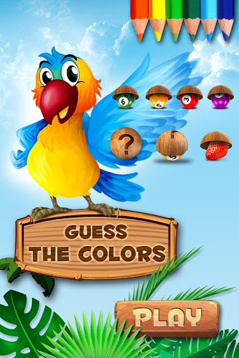 Guess the Colors