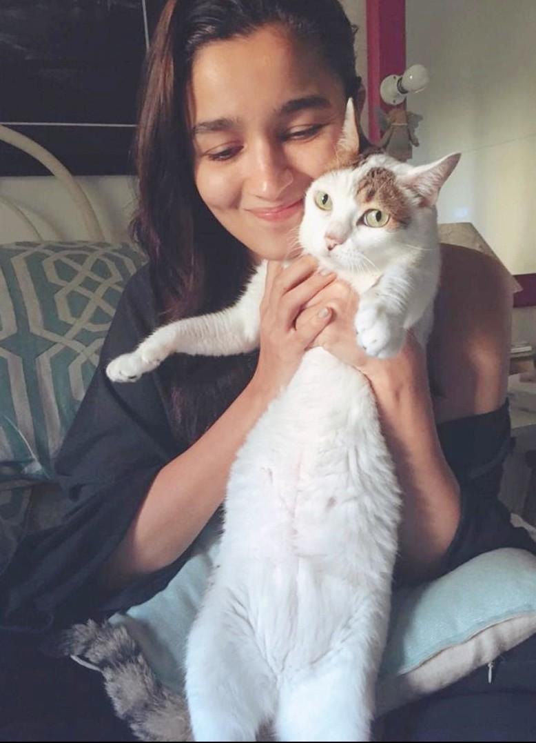 Alia Bhatt Wiki, Boyfriend, Height, Age, Family, Biography & More