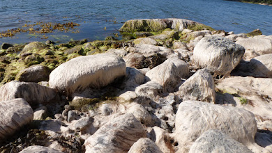Photo: Seagrass-wrapped stones, packed for your convenience.