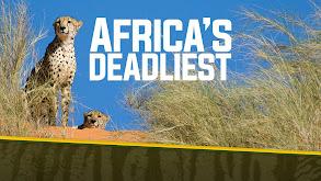 Africa's Deadliest thumbnail