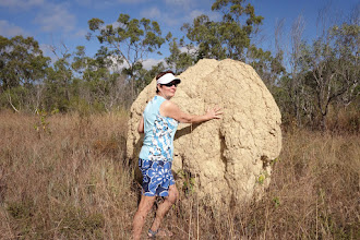 Photo: One of thousands of termite mounds decorating the grasslands, ranging from bowling ball size to bigger than this one!