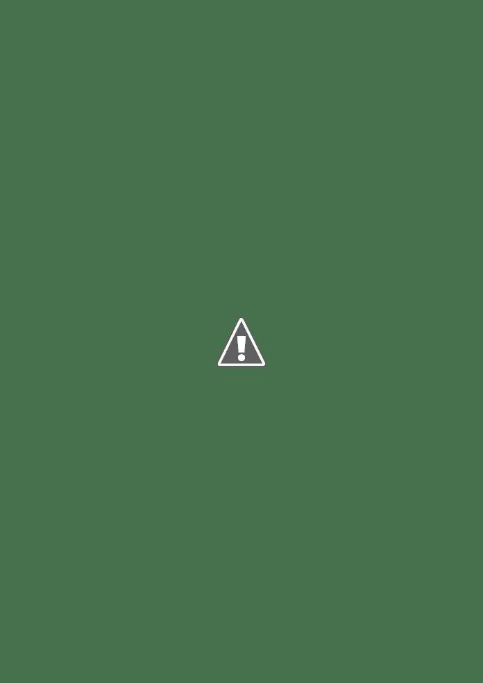 Palestante Dra. Silvana Corbellini