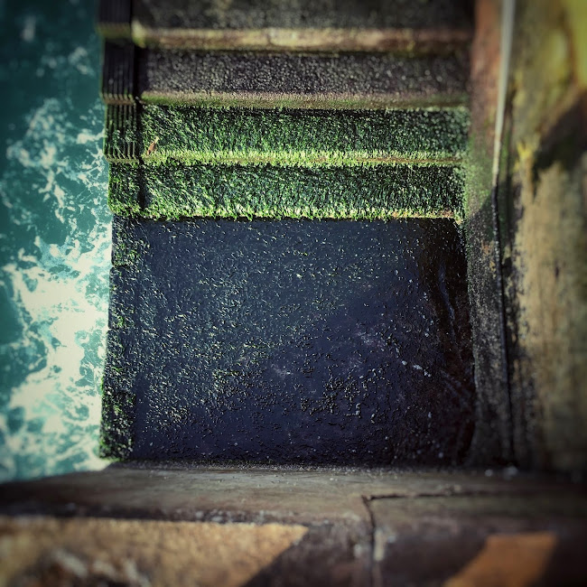 hong kong, victoria, Harbour, steps, pier, stairs, moss, algae, 碼頭, 石級, 樓梯, 港口