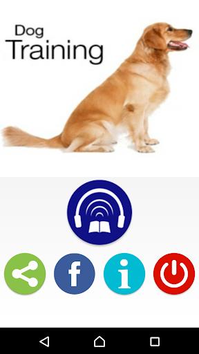 犬の訓練とトリック