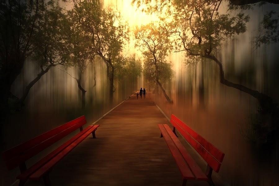 September  by Josh Adamski - Digital Art Abstract ( josh adamski, bench, trees, september )