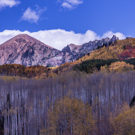 Mountain Magic by Gwen Paton - Landscapes Mountains & Hills ( mountains, crested butte, colorado,  )