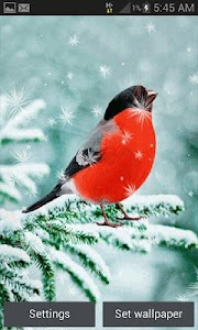 Snowy Red Bird LWP screenshot 0