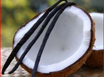 COCONUT LOVERS UNITE