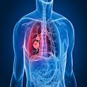 Symptoms of Bronchitis icon
