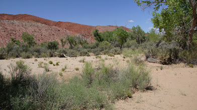 Photo: Chinle Formation ridges behind camp area, part of the Lime Ridge Anticline.
