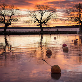 Sunrise in the marina by Mats Andersson - Landscapes Sunsets & Sunrises ( red clouds, winter, red sky, marina, sunrise,  )