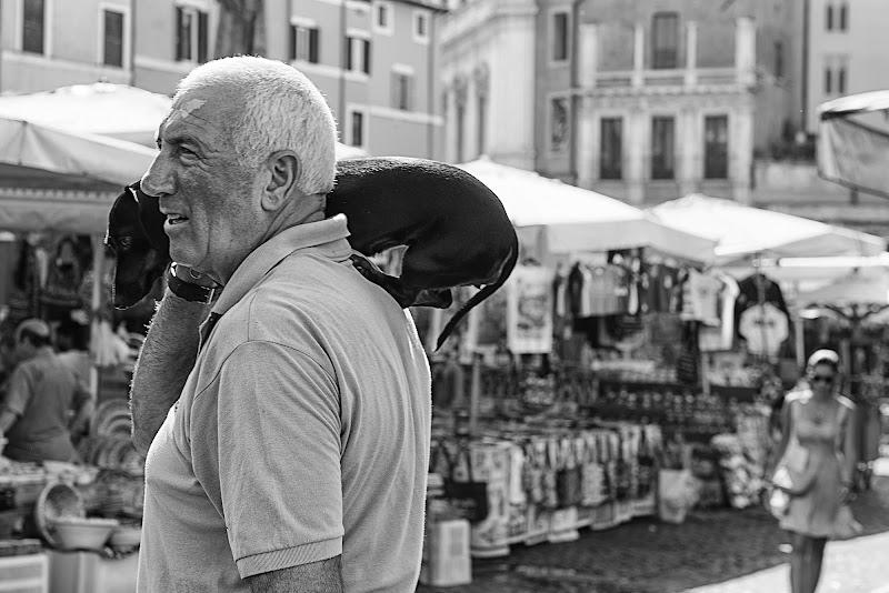 Street Dog di Domenico Cippitelli