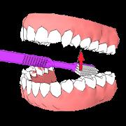 DentalCluj Brush Assistant