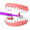 DentalCluj Brush Assistant icon