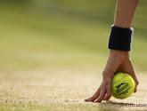 Cameron Norrie kan voorlopig terugblikken op uitstekend tennisjaar: de statistieken van de jonge Brit