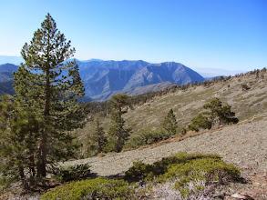 Photo: Looking northwest from the North Backbone Trail on the south ridge of Dawson Peak toward Mt. Baden-Powell