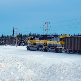 Alaska Train by Julio Cardona - Transportation Trains ( abstract, 2018, winter, cold, coal, fairbanks, art, snow, alaska, train, places, travel )