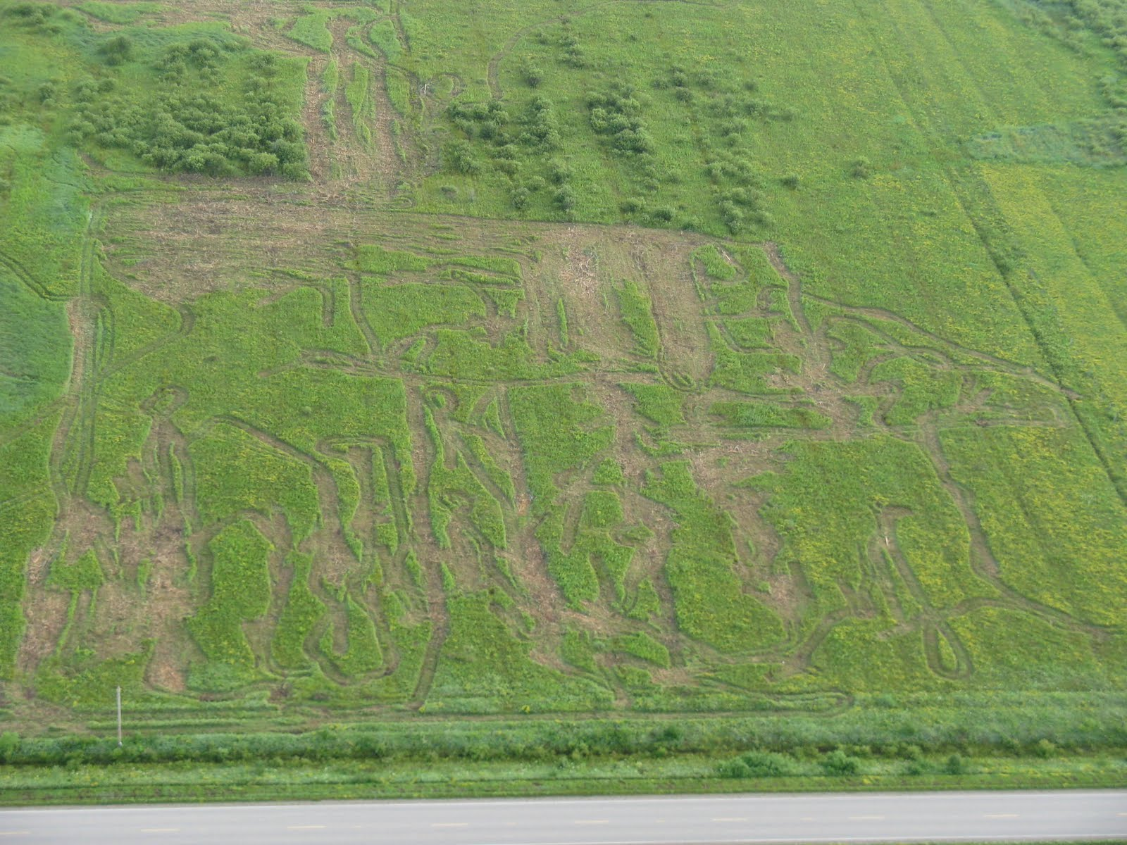 Photo: Wednesday morning flight finds ATV paths in field