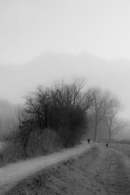 strada nella nebbia di davide_negro