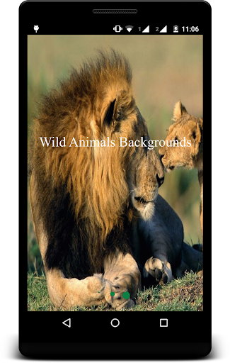 Wild Animals Backgrounds
