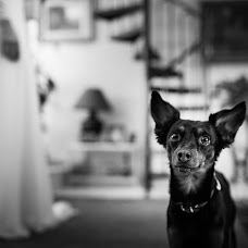 Wedding photographer Juan Luis Morilla (juanluismorilla). Photo of 17.04.2015