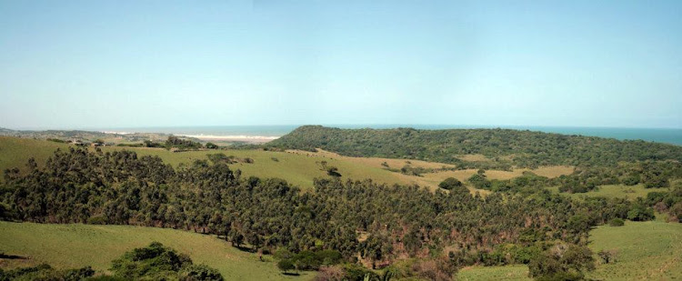 A general view of the Amatikulu Nature Reserve.