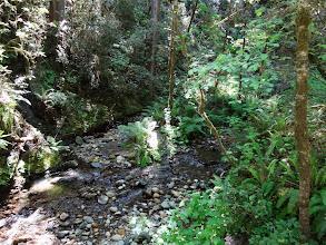 Photo: Trails