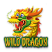 Wild Dragon icon