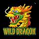 Wild Dragon (game)