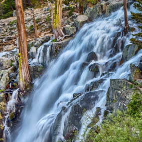 The fall of melting snowcapped Sierras by Jamie Valladao - Landscapes Waterscapes ( snowfall, water, pines, waterfalls, snowmelt, emerald bay, powerful, mountains, emerald, sierras, tahoe, snow, trees, rocks,  )