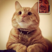 Photo: FaceTime with Charlie, my daughter's cat. He seems to listen to me! #intercer #cat #pet #cats #pets #phone #eyes #meow #beautiful #cute #cutie #animal #sweet #kitty #kitten #catlovers #love #pretty #funny #fur #catsofinstagram #play #paw #paws #attention #look #listen #facetime - via Instagram, http://instagr.am/p/TRTdYqpfly/