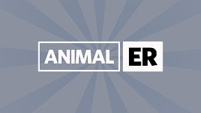 Animal ER thumbnail