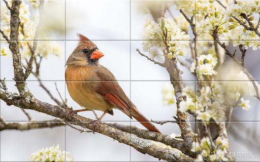 Sparrows Puzzle  screenshots 8