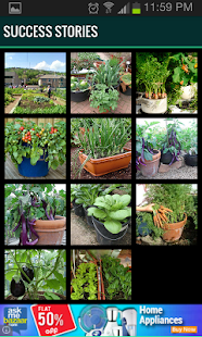 Roof Garden (Grow Vegetables)- screenshot thumbnail