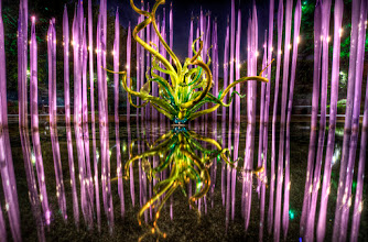 Photo: Regal Reeds Awesome night at the Dallas Arboretum with the Dallas Photography Group. These sculptures were amazing, but when it got dark, they really came to life. If you are a local DFW photographer, or even just photography curious, you should join the Dallas Photography Group through meetup.com. The experiences and events are normally something you wouldn't do on your own, plus it's great to have someone there if you have questions about camera settings or setup. I wouldn't be where I am today without it.